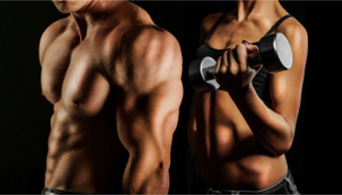 bodybuilding-article