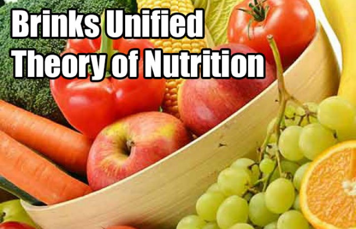 brinks unified theory of nutrition