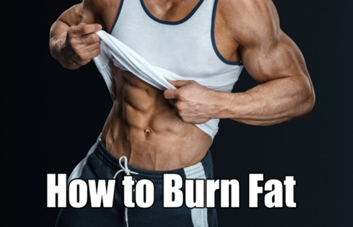 how to burn fat