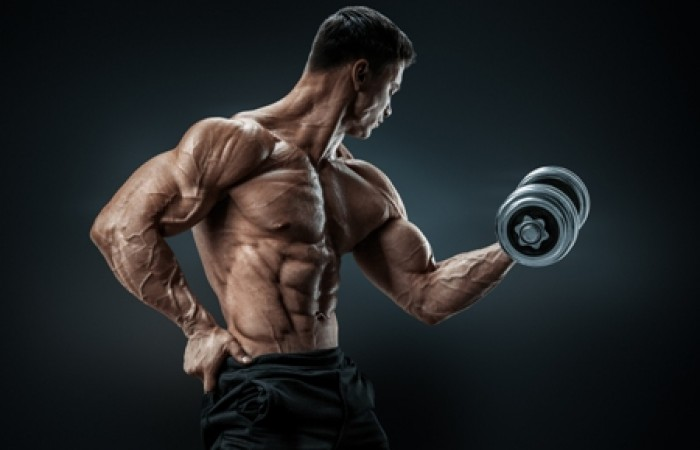muscle man curling dumbbell
