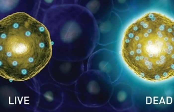 toxins trapped in fat cells