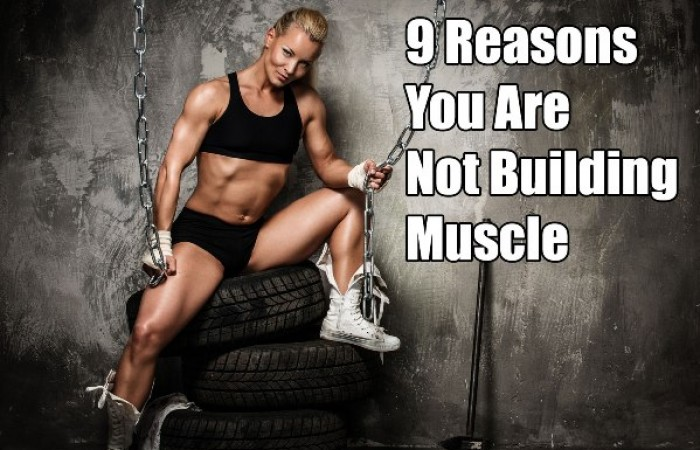 9 reasons you are not building muscle