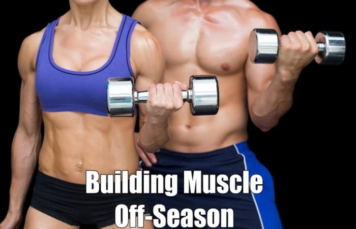 building muscle off season
