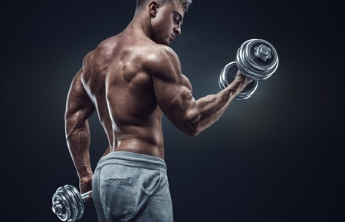male bodybuilder curling dumbbell