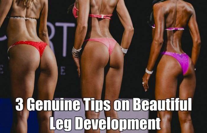leg development