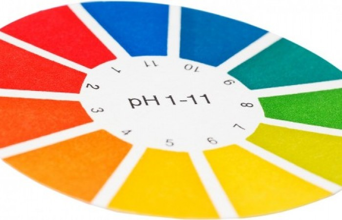 ph balance for weight loss