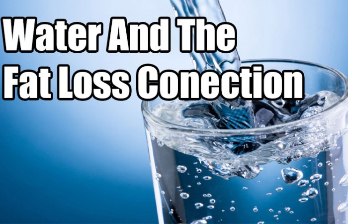 water and fat loss