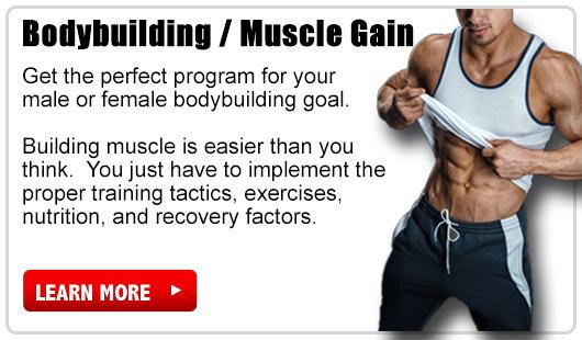 bodybuilding fitness program