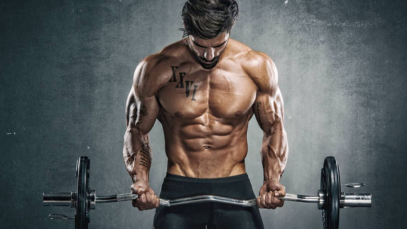 biceps workout routine