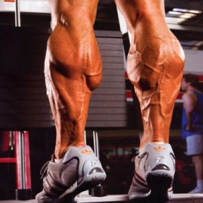 Interesting Calf Training Tips to Use